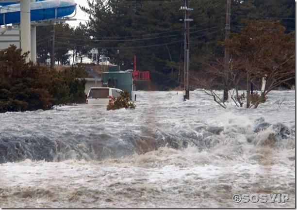 Tsunami Japao Terremoto.jpg (8)