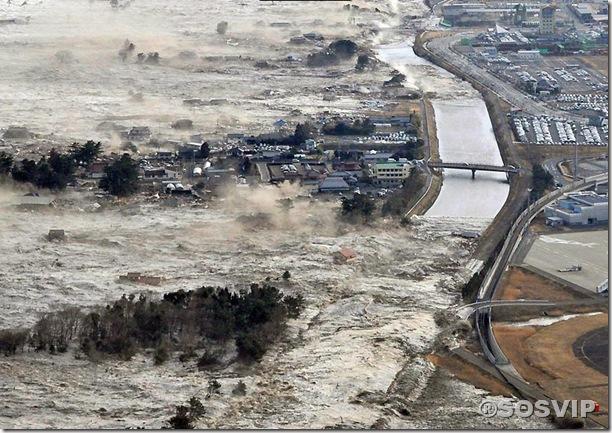Tsunami Japao Terremoto.jpg (9)
