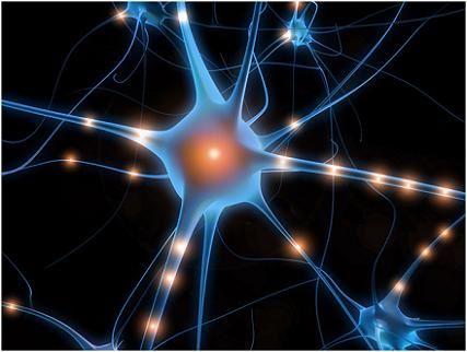 如何培养逻辑思维的方法