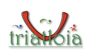 logo3001001vs9.png