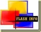 Flash info_thumb[2][1]