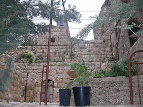 Palestine guest House