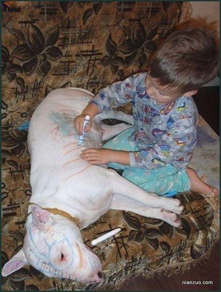 孩子捣蛋 画板,这狗真乖,狗