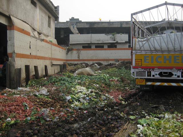 Waste piles in Azadpur Mandi
