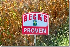 becks seed 2