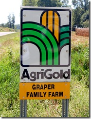 agrigold seed 1