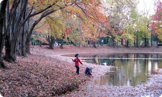 fall days 071