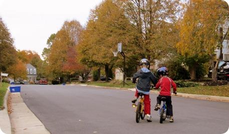 fall days 078