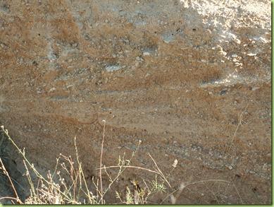 Estratificación cruzada en sedimentos de la laguna.