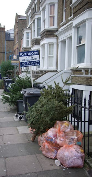 Photo of Christmas tree lined up with rubbish waiting to be collected, Vassall Ward