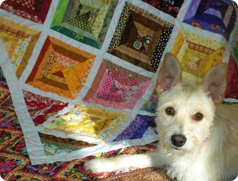 willow and quilt