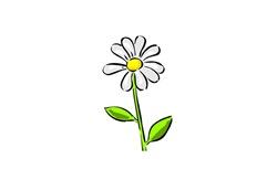 daisy[7]