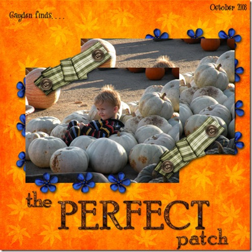 perfectpatch