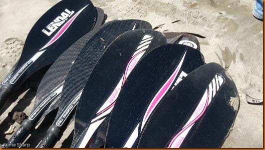 kayakdownundernzleg1-02992