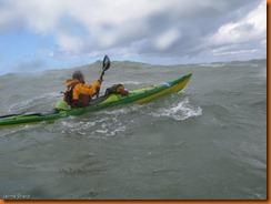 kayakdownundernzleg2-1511