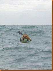 kayakdownundernzleg2-1408