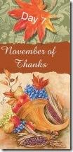 November of Thanks7 at 'Rebecca Writes'