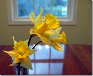 daffodils_inside