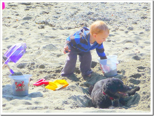 Boy and dog in sand
