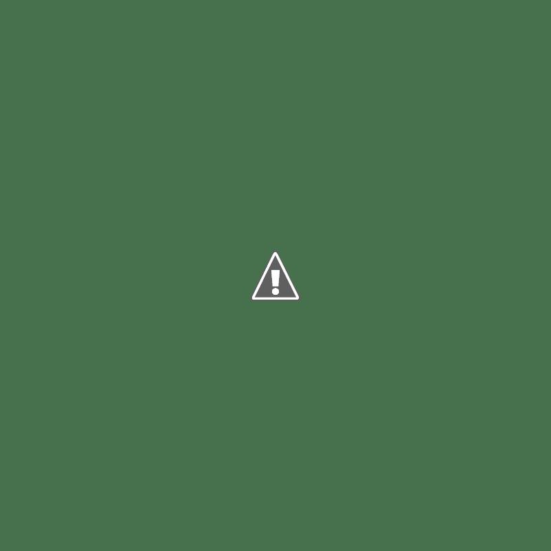 Inilah 10 Ekosistem Pulau Terunik Di Dunia