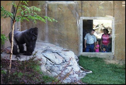 Zoo3-412_thumb