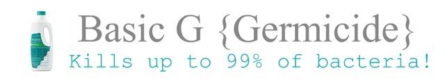 Basic g Banner