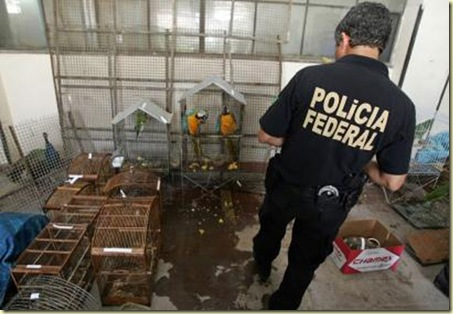 Interpol International Wildlife Smuggling Syndicate Bust interpol int pic