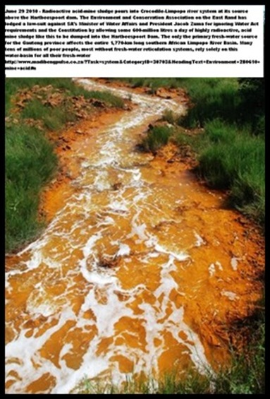 Acid Mine Drainage from West Rand Mines Mariette Liefferink Hartbeespoortdam[8]