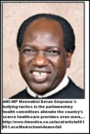 Goqwana Monwabisi Bevan chair health committee bullying tactics