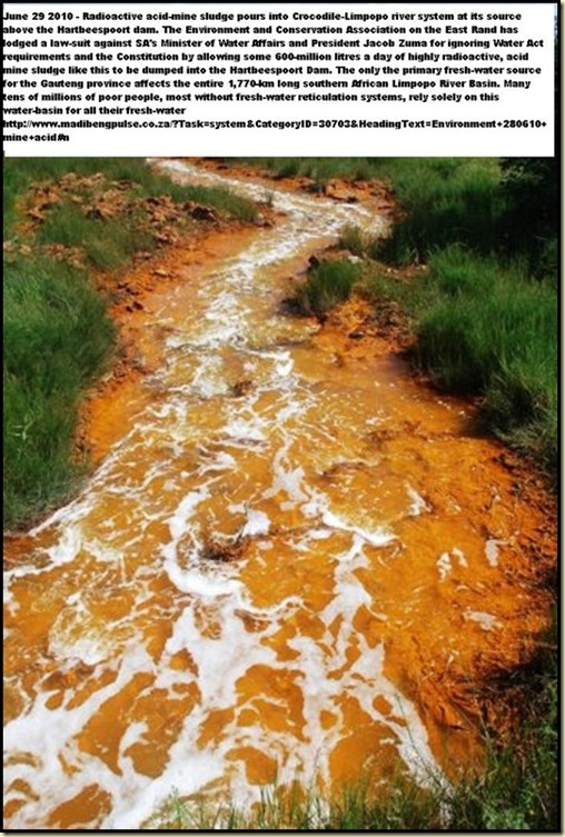 Acid Mine Drainage from West Rand Mines Mariette Liefferink Hartbeespoortdam