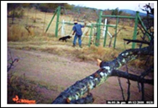 Witwater Game Reserve POACHER CAUGHT ON CAMERA NOV202010 EBLOCKWATCH GERD