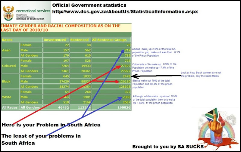 Racial composition of jailed SA criminals SA correctional services STATS