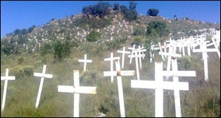 FIELD OF CROSSES STOP BOER GENOCIDE WITHOUT LOGO