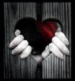 un cuore d'amore