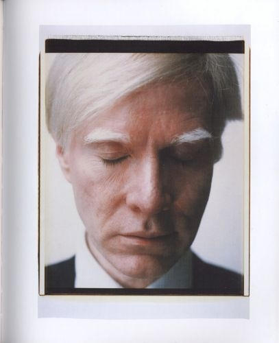 Polaroid warhol
