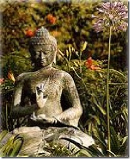 zen-like-serenity