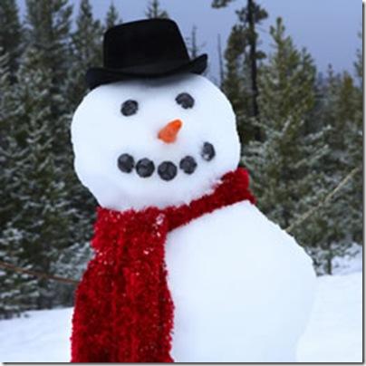 home_20080218_snowmen_banner