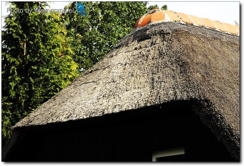 经济发展和环境保护的典范-荷兰羊角村(Giethorren) - 欧洲碎片-史唯平 - 欧洲碎片-史唯平的博客