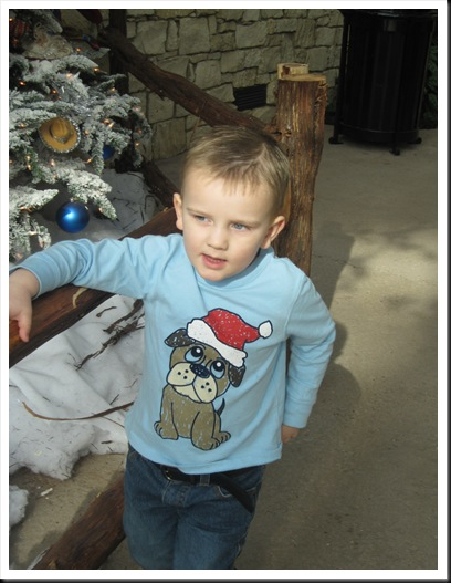 christmas 2009 171