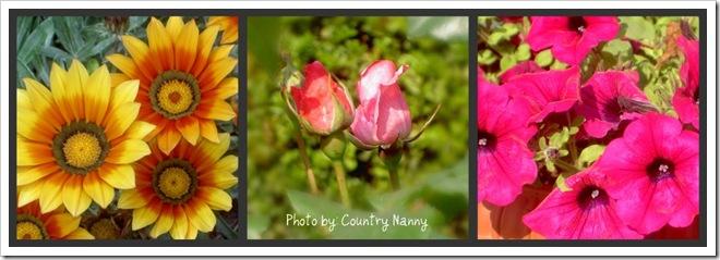 fiori collage