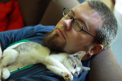 cute kitten napping with daddy while tv is on