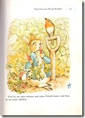 peter rabbit_5