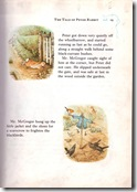 peter rabbit_11