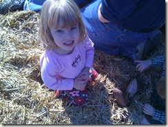 11-6-09 Pumpkin patch6