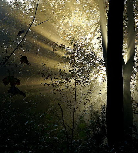 Breathtaking Photos 