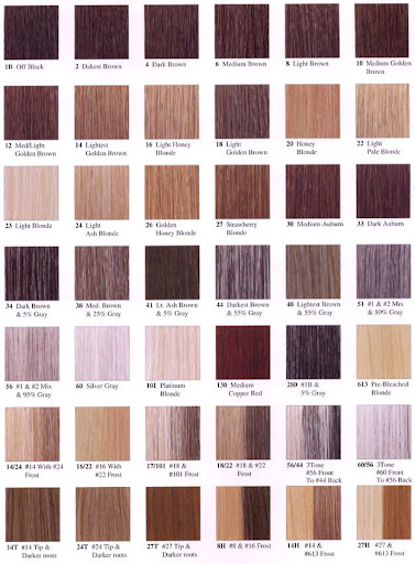 hair color chart for revlon powder dye color chart | | tina zaremba higgins