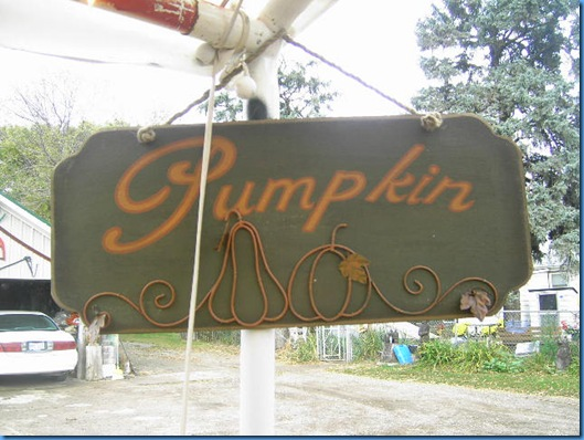 Pumpkin Farm Oct 2009 026