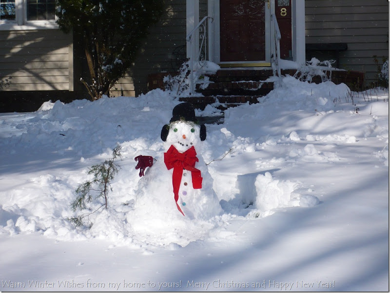 Snow December 20 2009 011