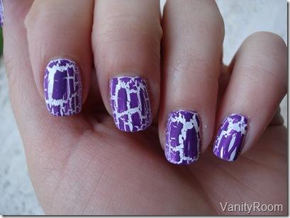 white pop violet (4)