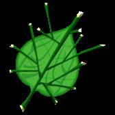 Deku Leaf